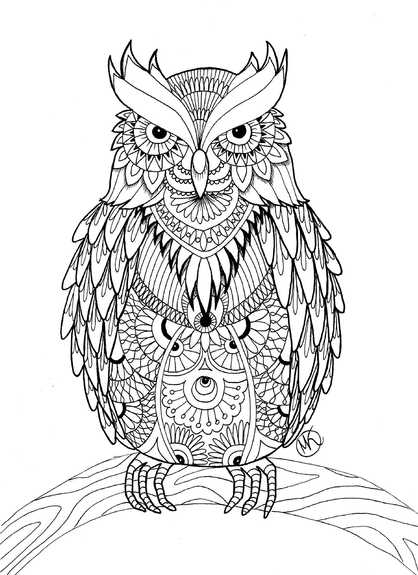 adult coloring books owl