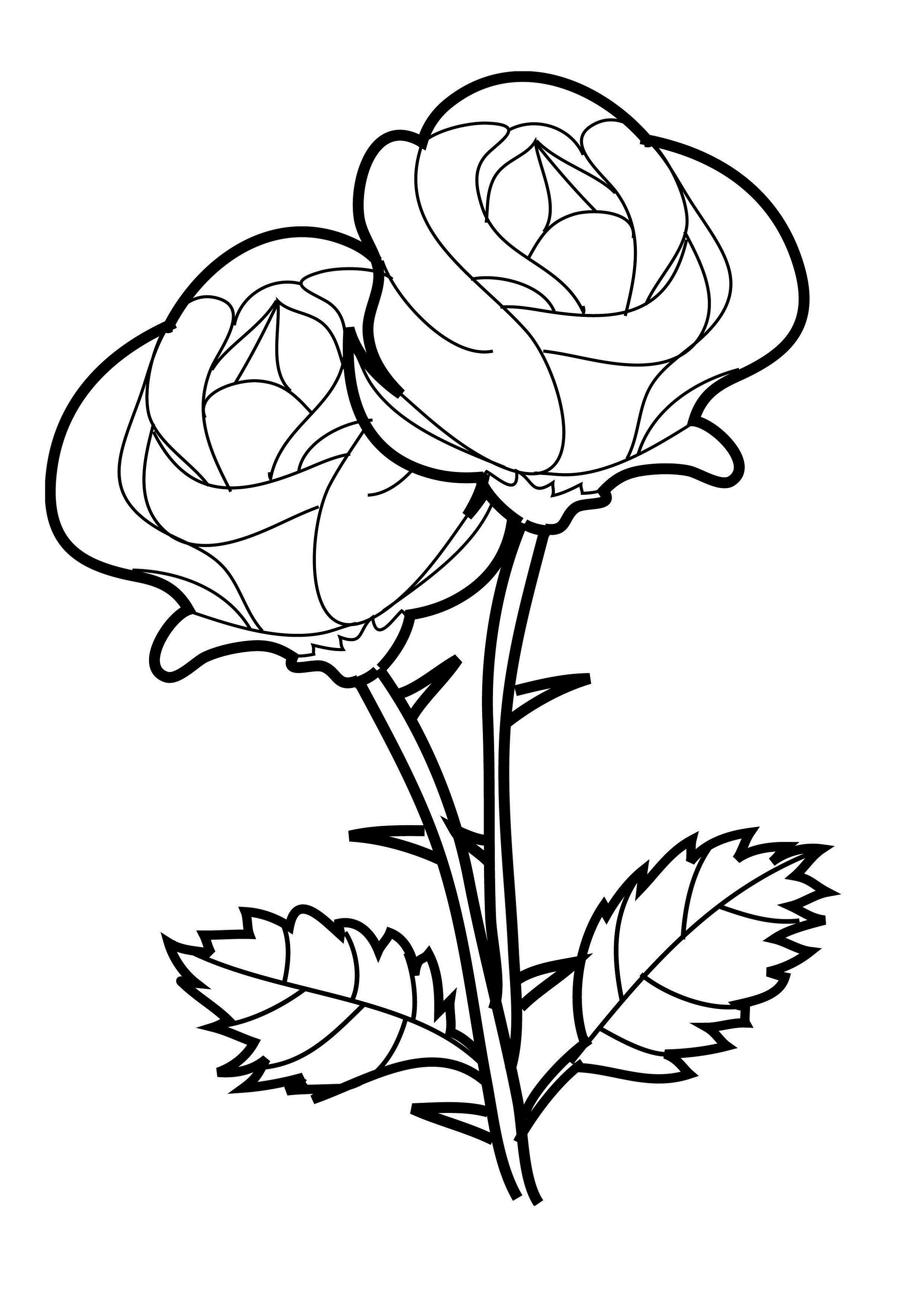coloring pages for girls rose