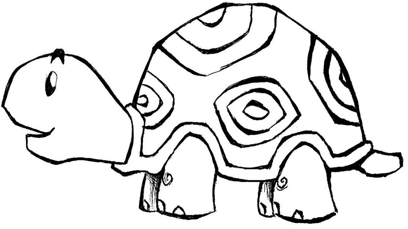 coloring pages for kids turtle