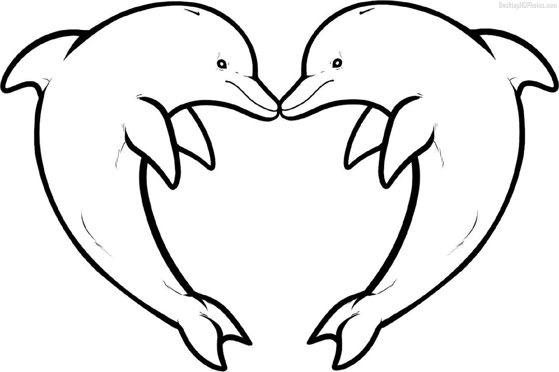 dolphin coloring pages dolphin love