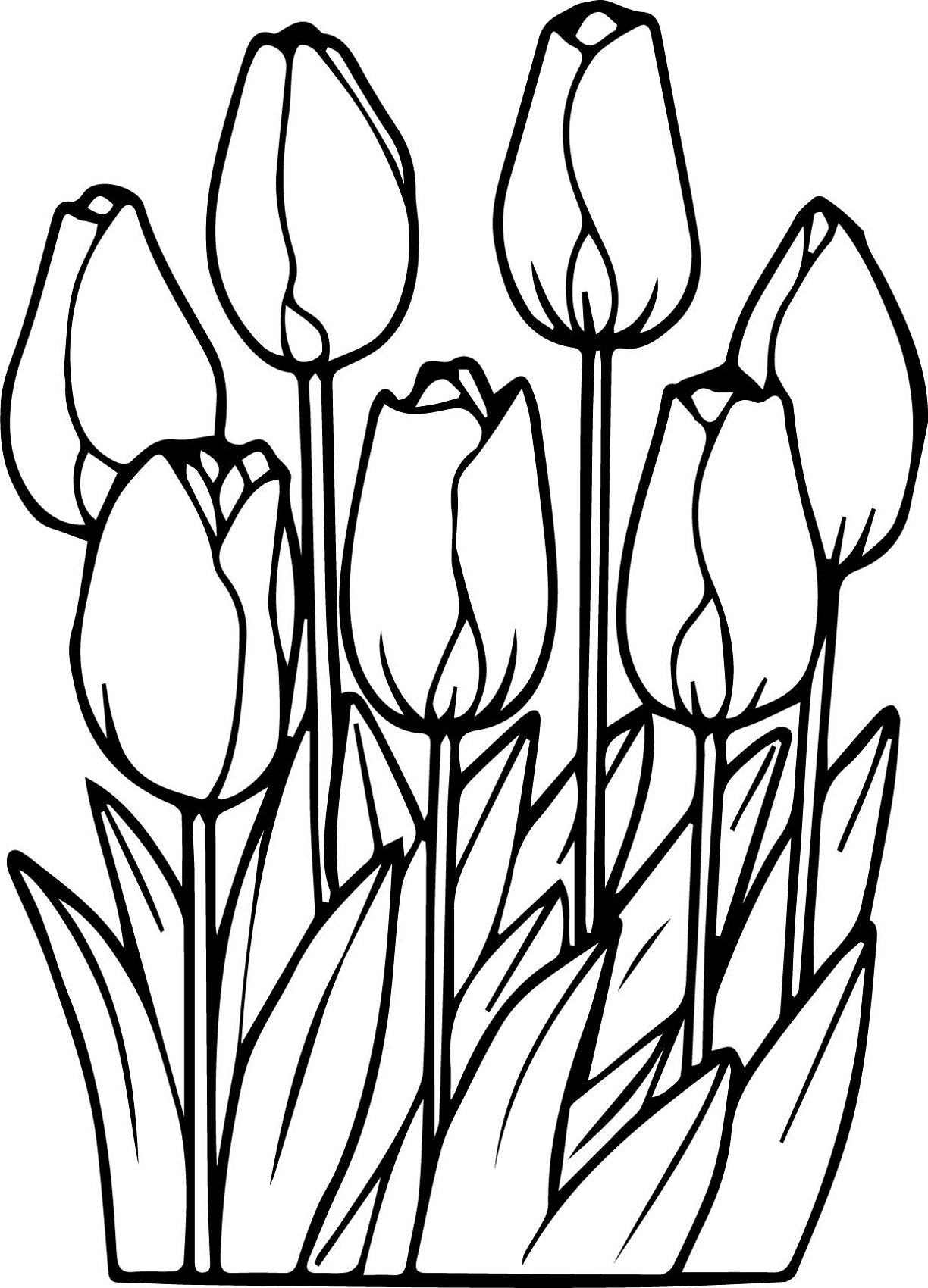 flower coloring pages tulips flower