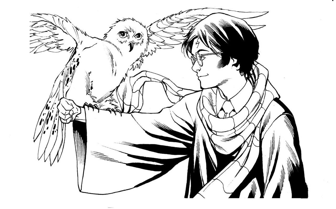 harry potter coloring pages harry potter and owl
