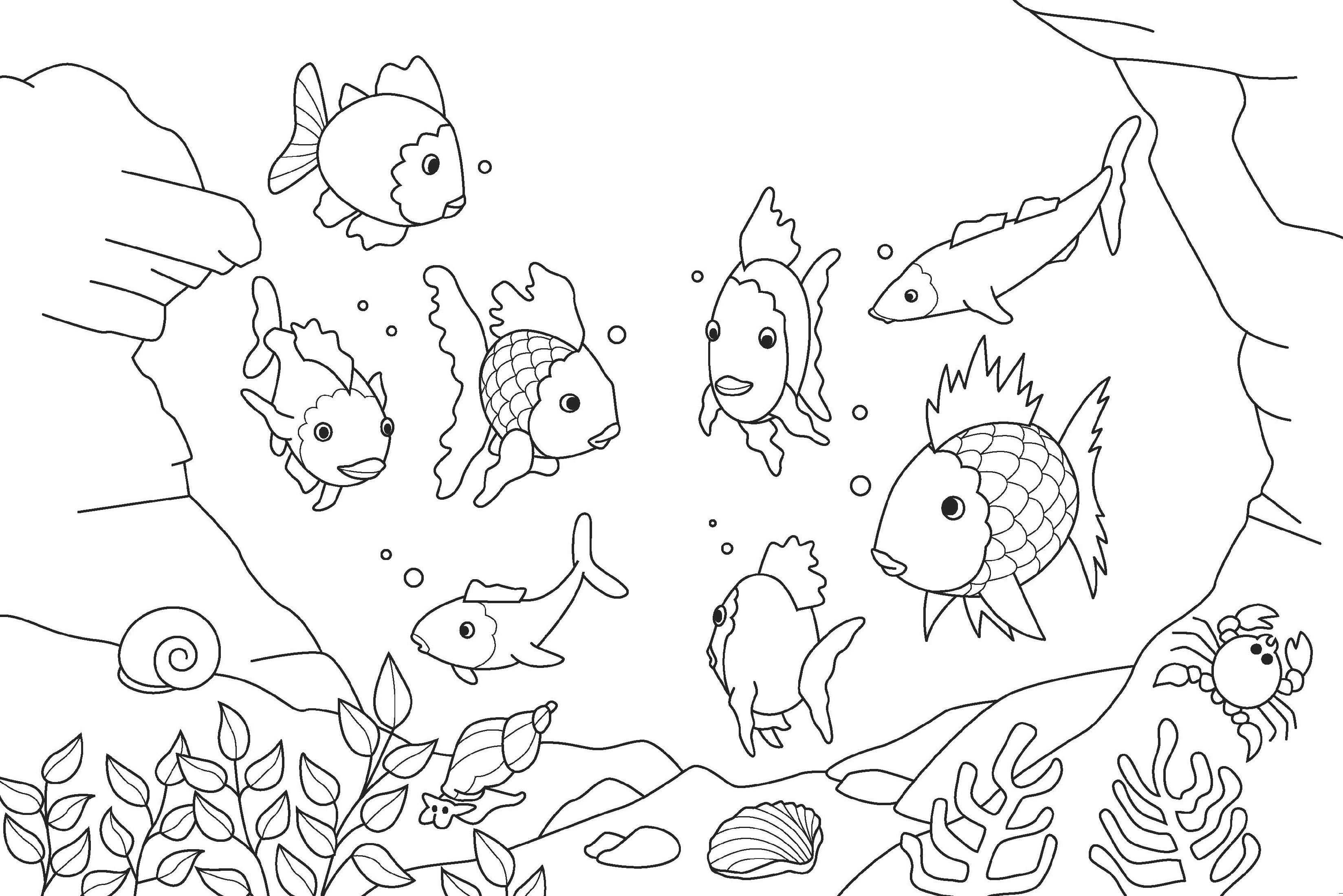 rainbow fish coloring page fish 3