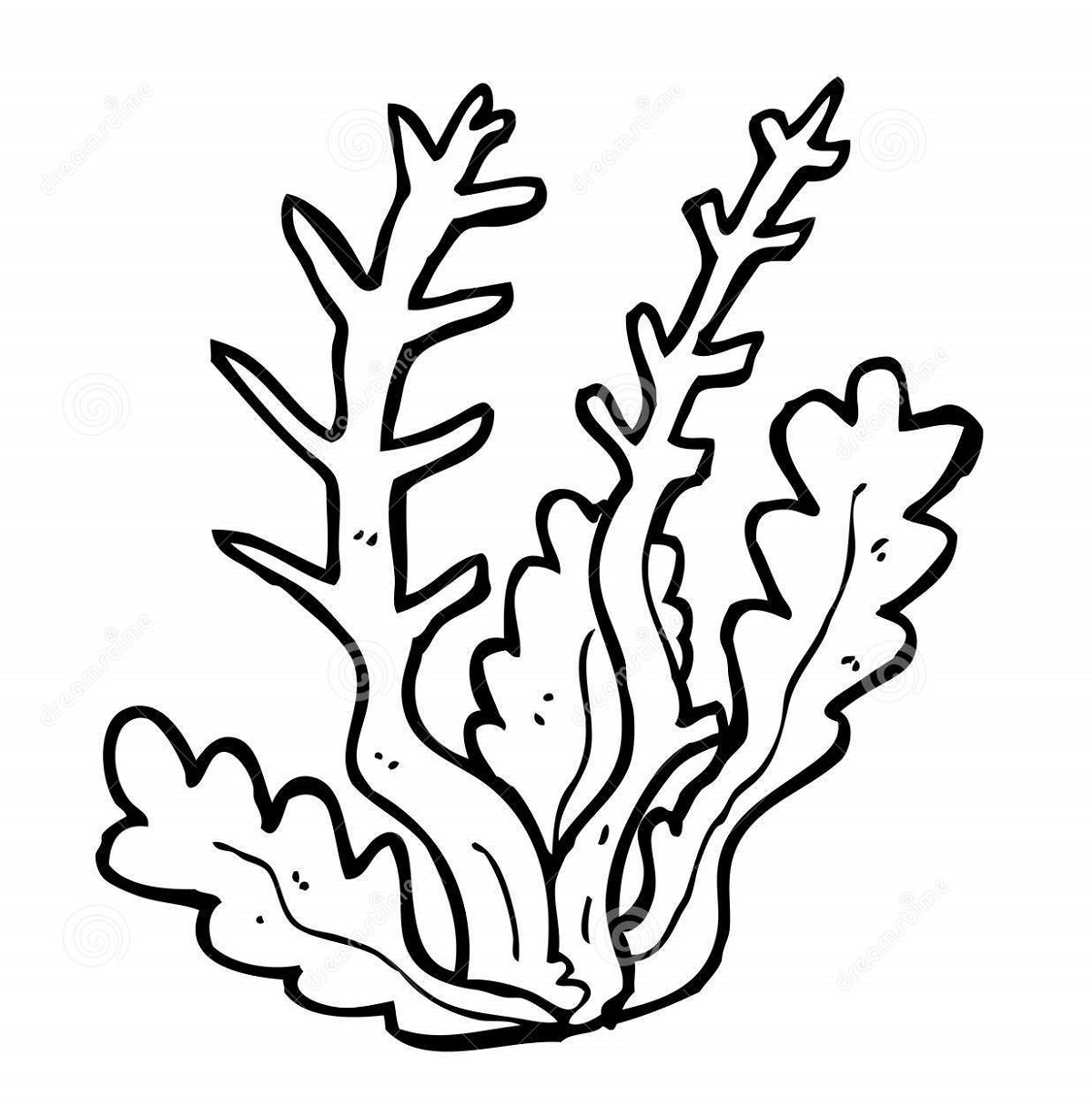 Seaweed coloring pages one