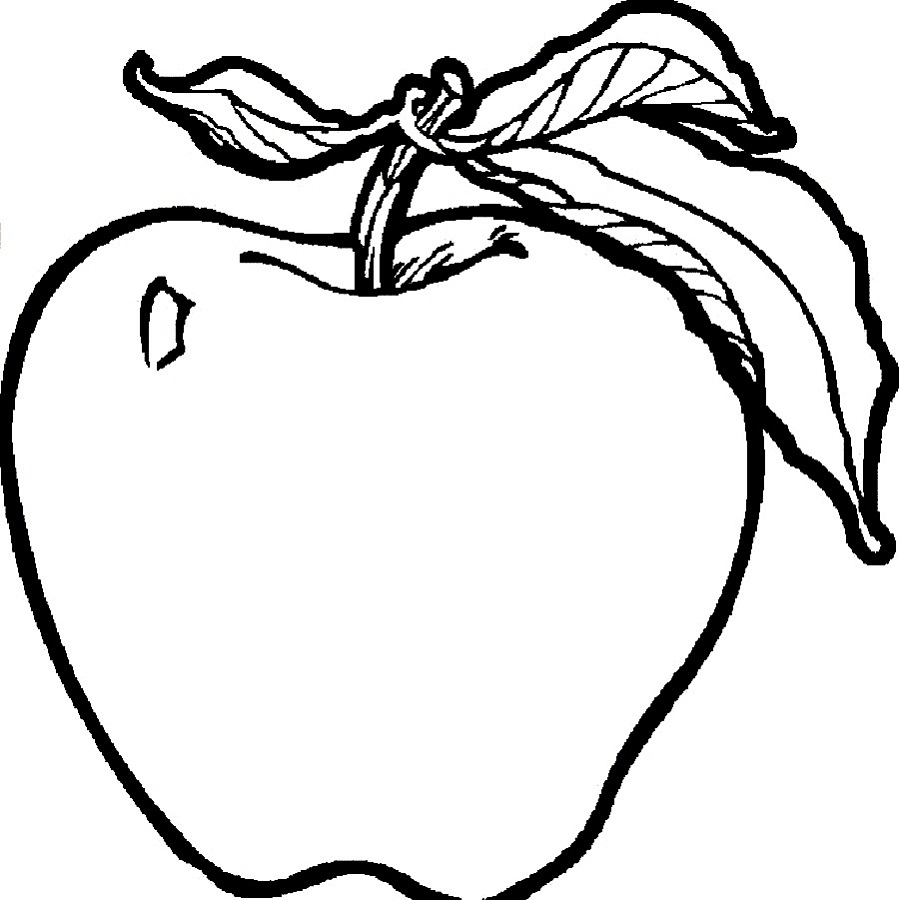 fruit coloring pages apple