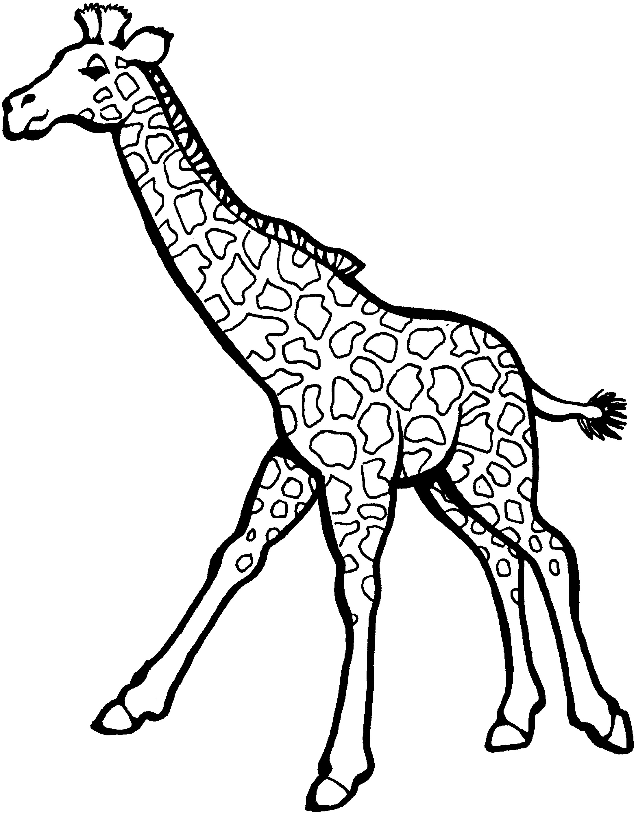 giraffe coloring pages run