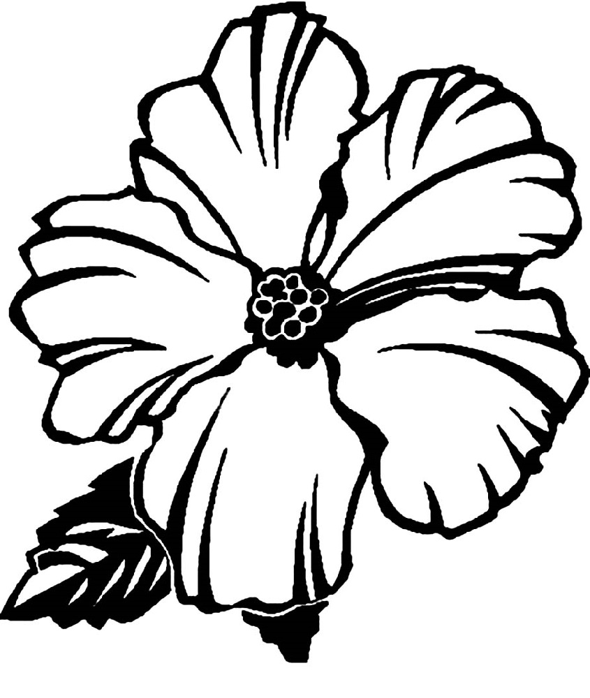 hawaiian flower coloring page flower 4