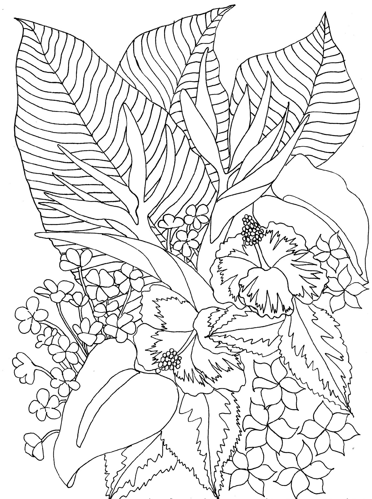 hawaiian flower coloring page flower 5