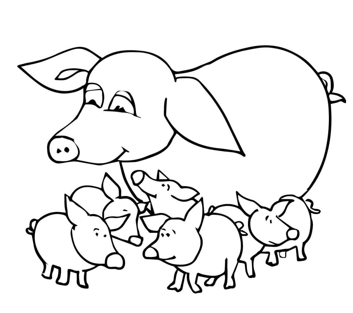 pig coloring pages pig and child