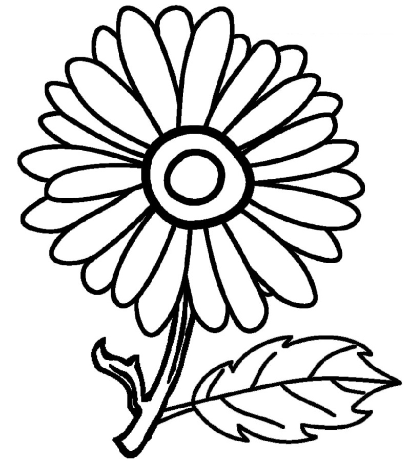 sunflower coloring page 5