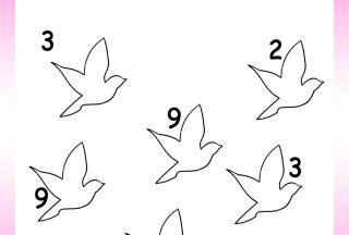 worksheet for nursery bird drawing