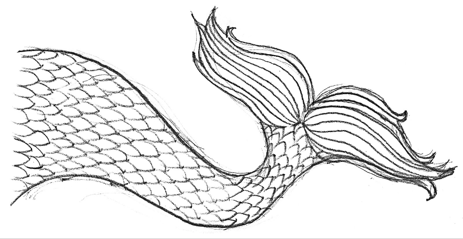 mermaid tail coloring page 1