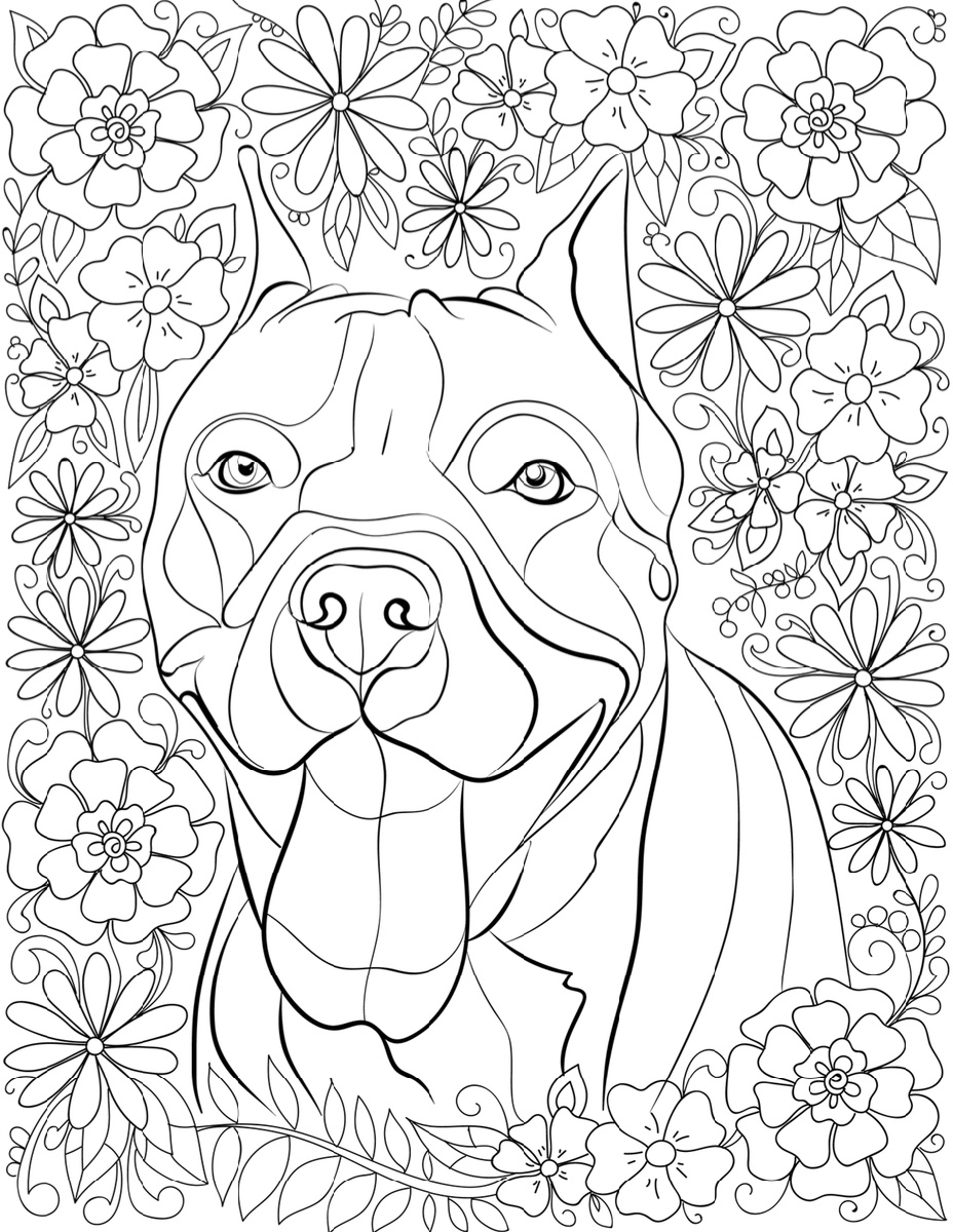 Pitbull Coloring Pages For Adults