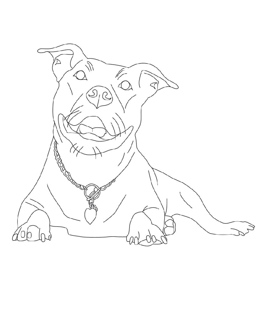 Pitbull Coloring Pages Printable