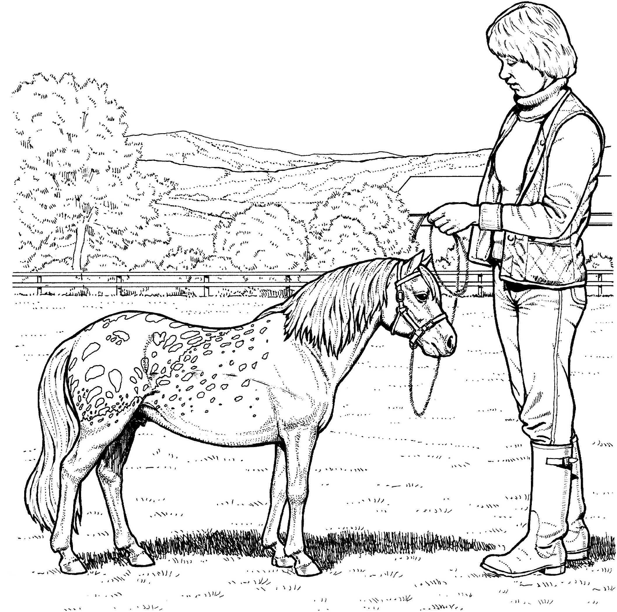 Pony Coloring Pages Realistic