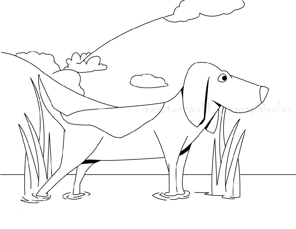 beagle coloring pages 1