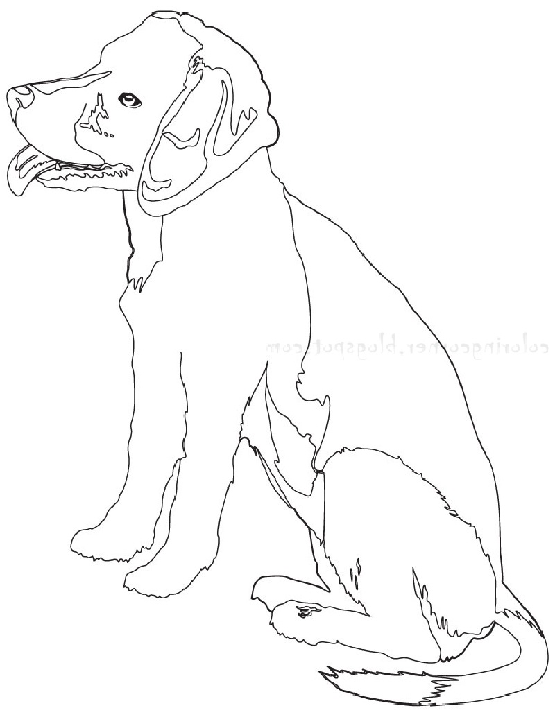 beagle coloring pages 2