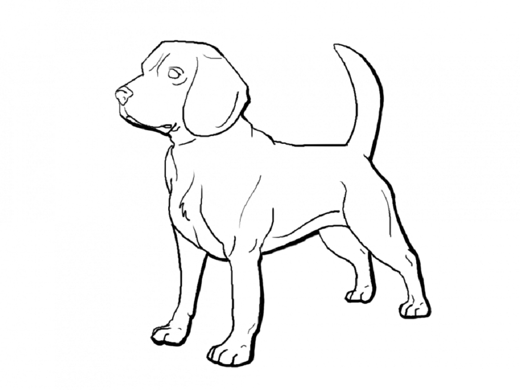 beagle coloring pages 5