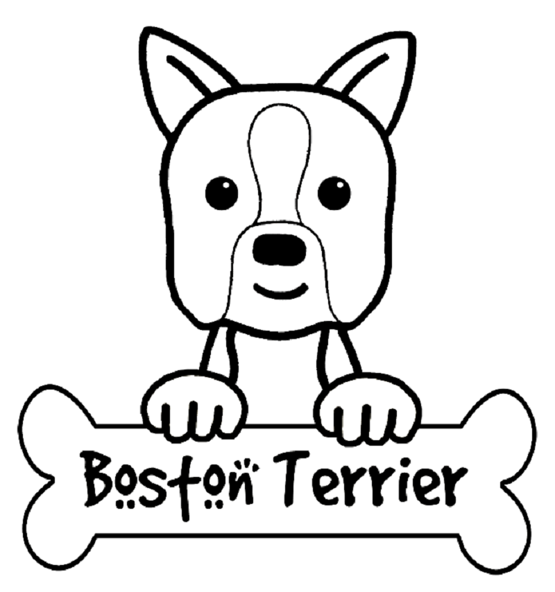 boston terrier coloring pages 1