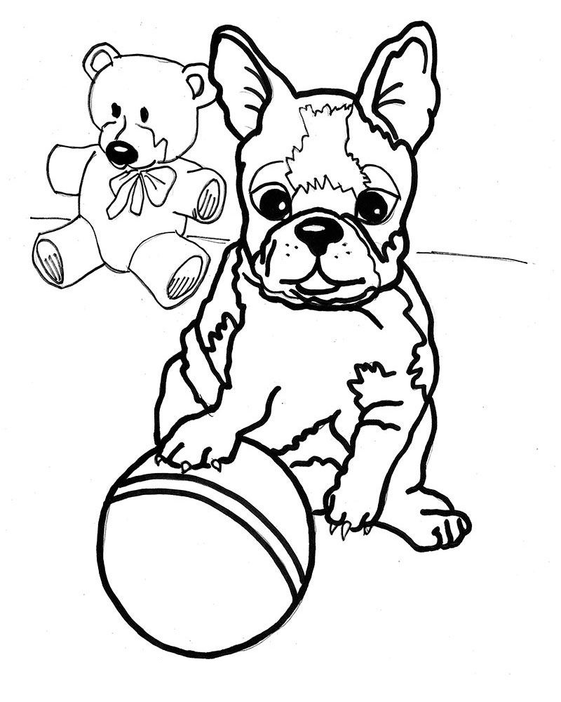 boston terrier coloring pages 2