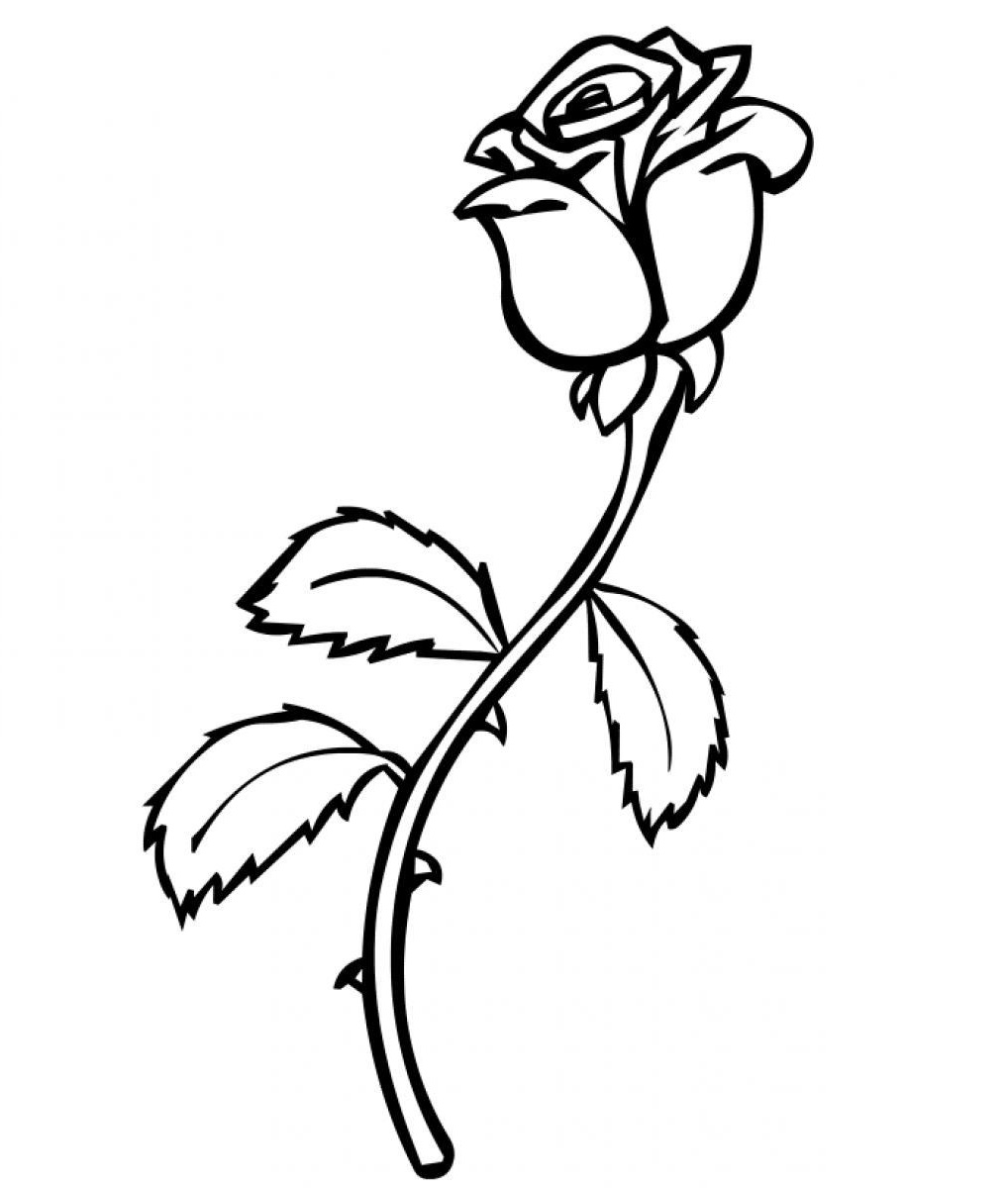 rose coloring pages 3