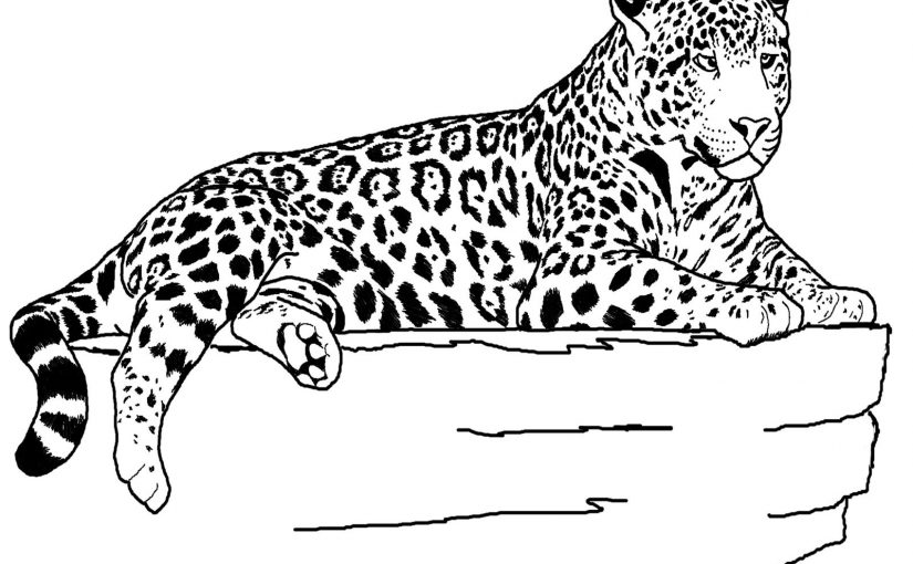 Jaguar Coloring Pages One Downloadable