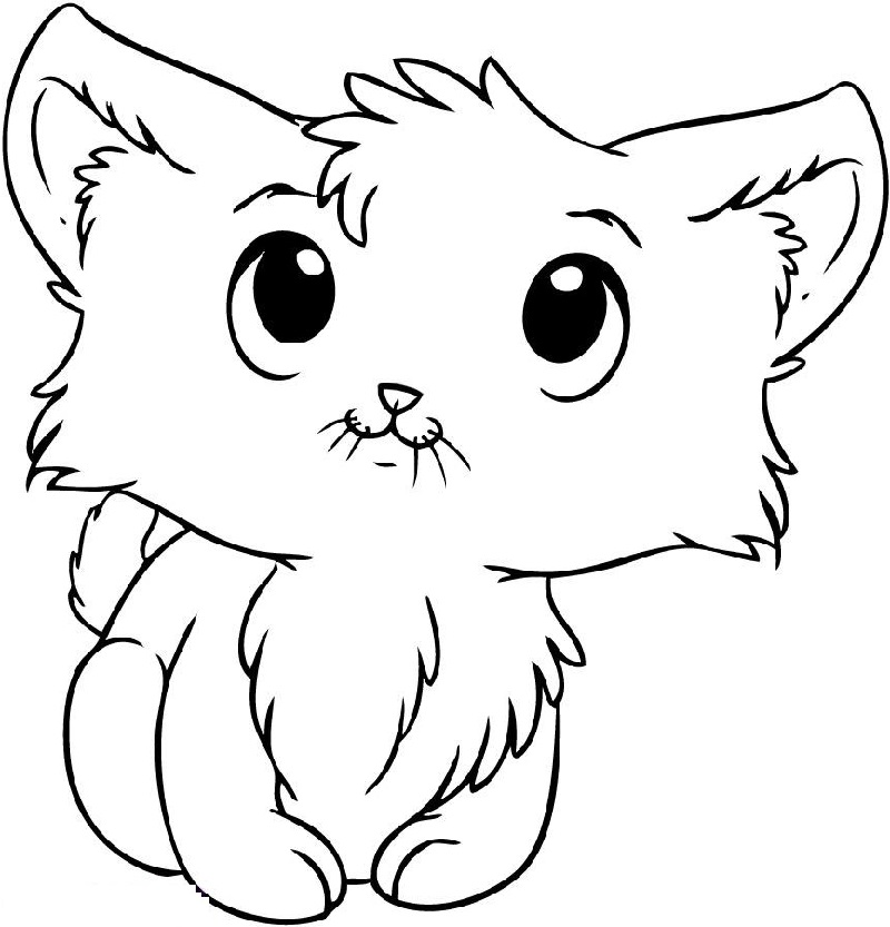 Kitten coloring pages cute cats