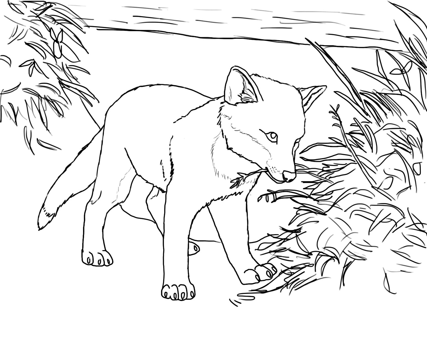 fox coloring pages fox eating