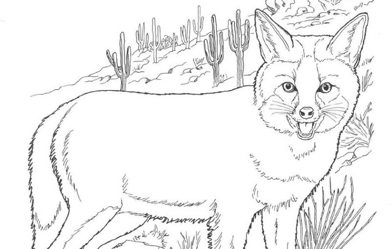 fox coloring pages fox garden