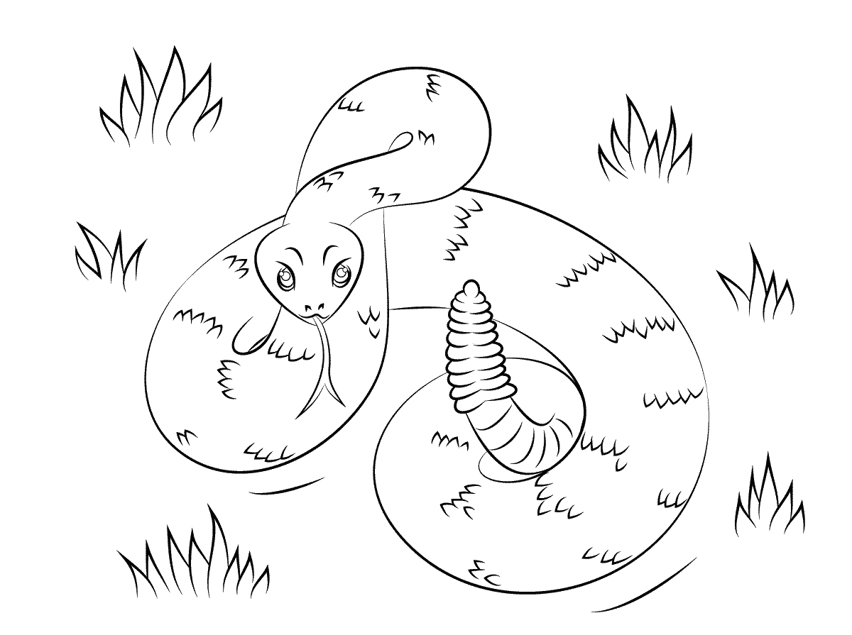 rattlesnake coloring page 5