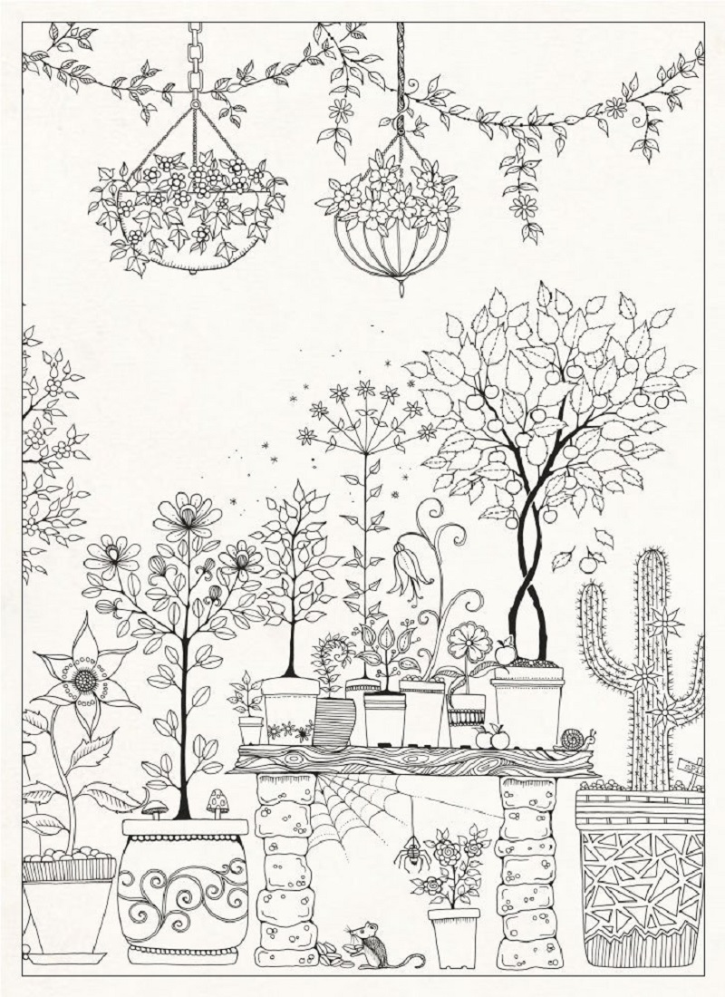 secret garden coloring book 2