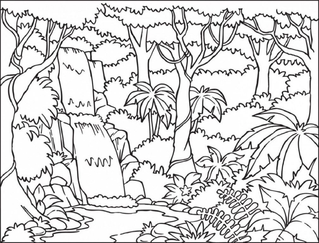 amazon coloring books 3