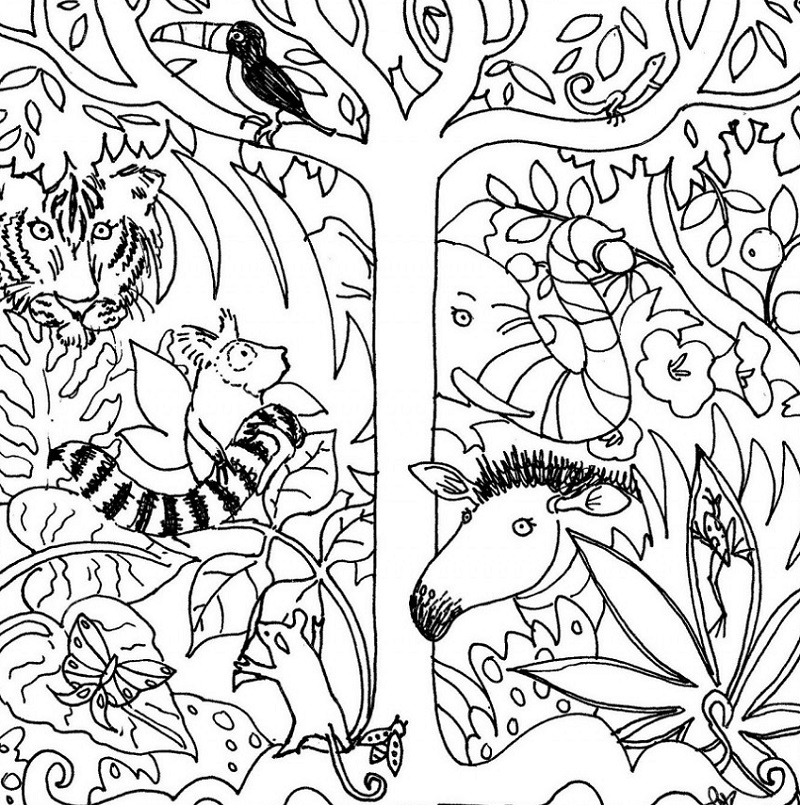 amazon coloring books 5