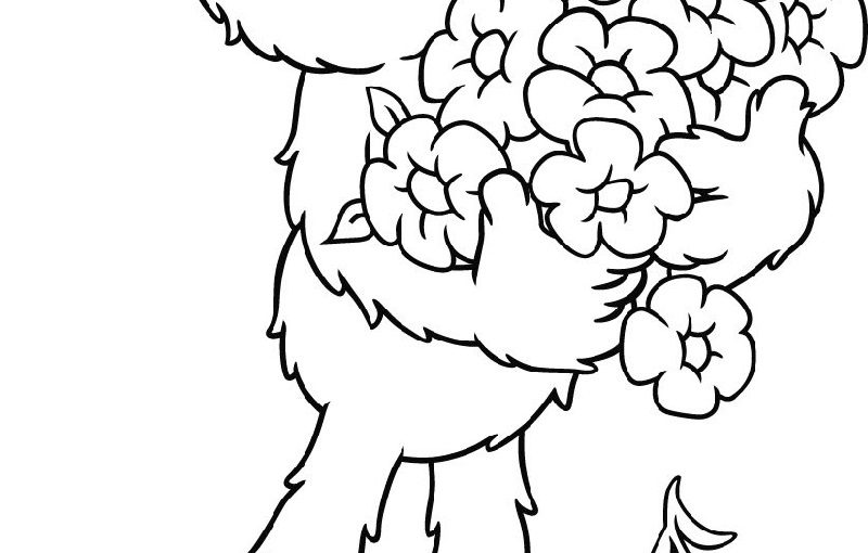 Elmo Coloring Pages for Cartoon Lovers