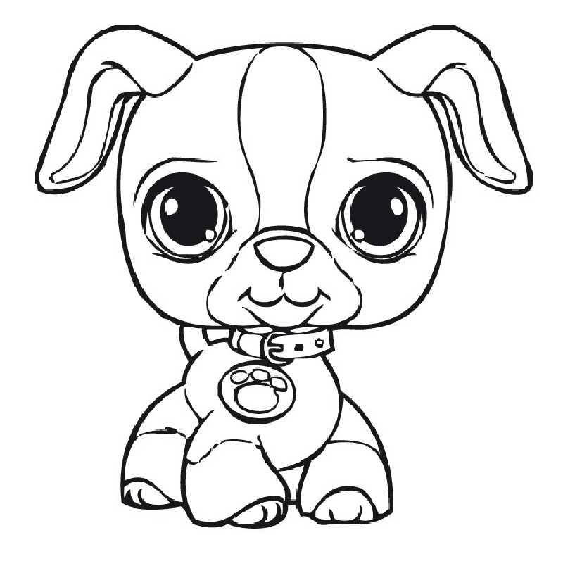 littlest pet shop coloring pages 4