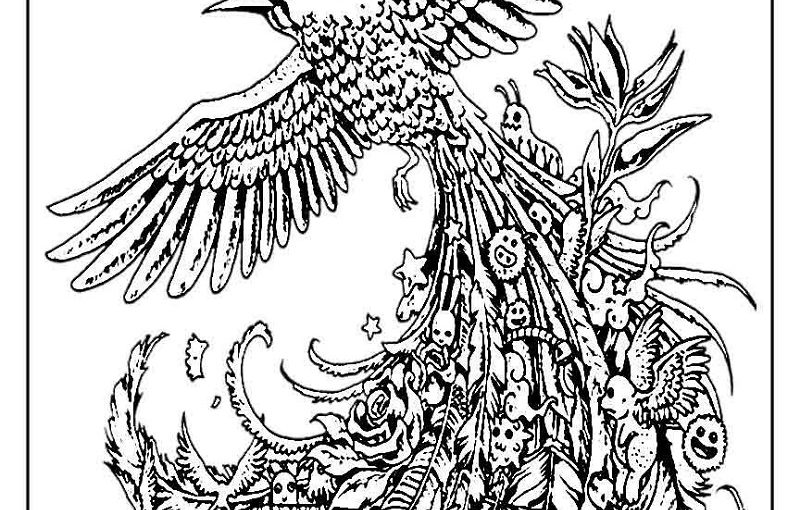 Bird Coloring Pages For Adults Downloadable