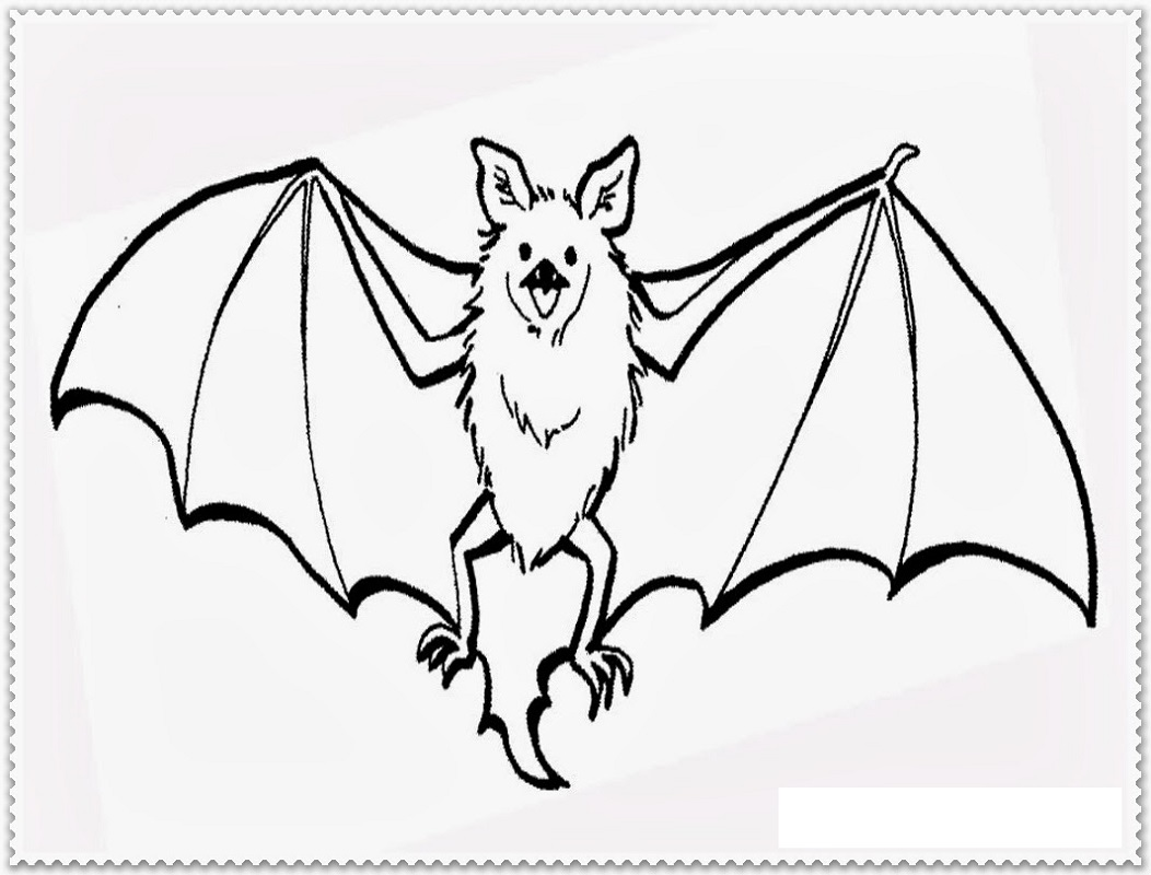 bat coloring pages 4