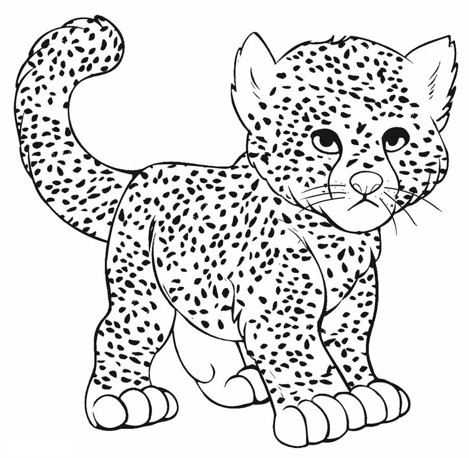 cheetah coloring pages 5
