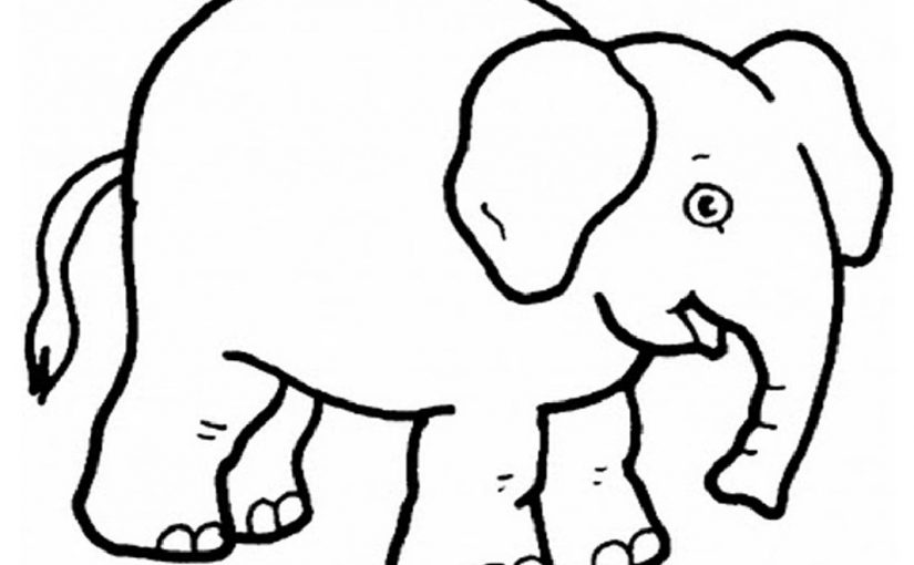 Elephant Coloring Pages for Creative Young