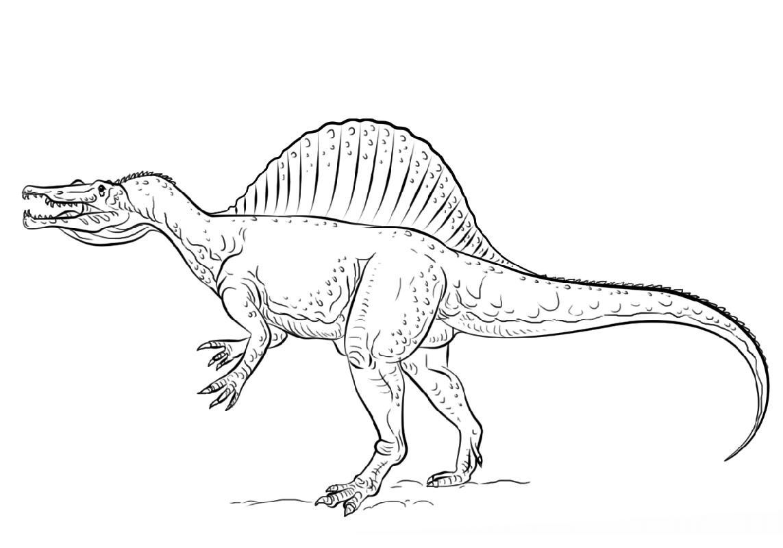 spinosaurus coloring page 2