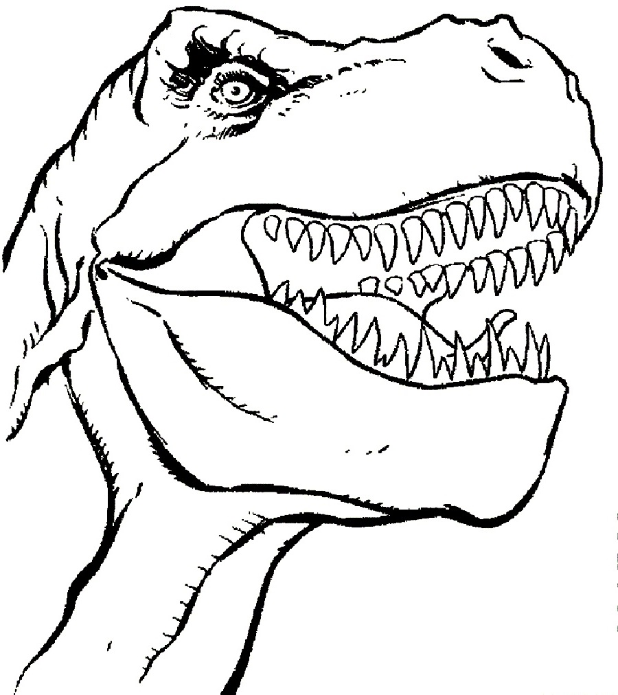 t rex coloring page 3