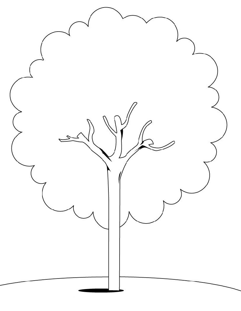 tree coloring pages 1