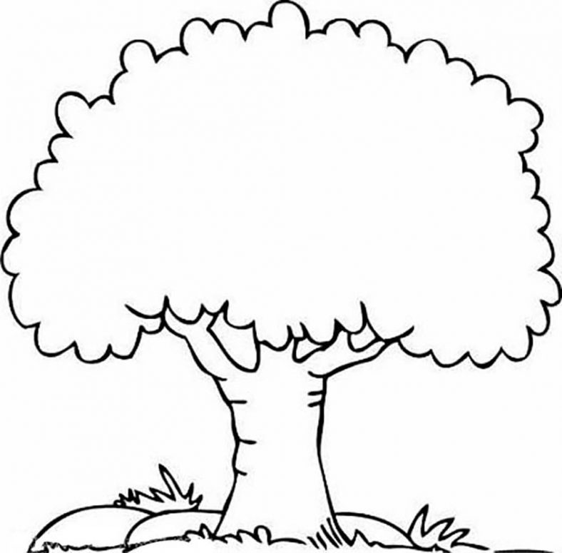 tree coloring pages 4
