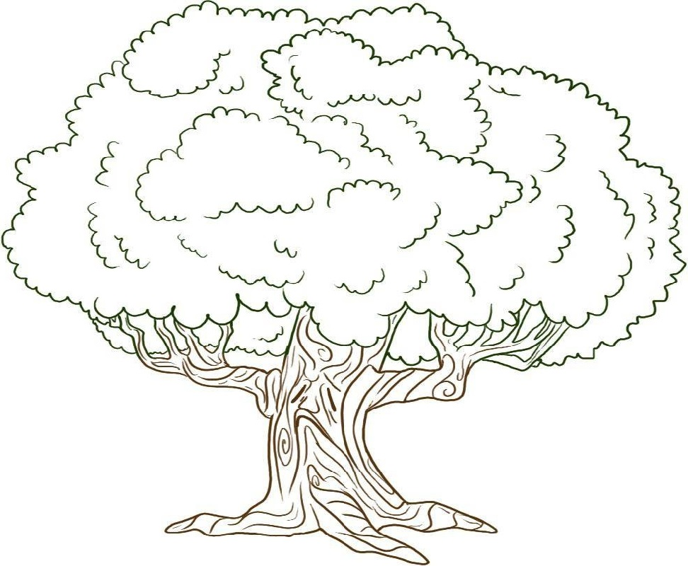 tree coloring pages 5